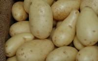 Wie man mit Kartoffeln eine Milliarde verdient
